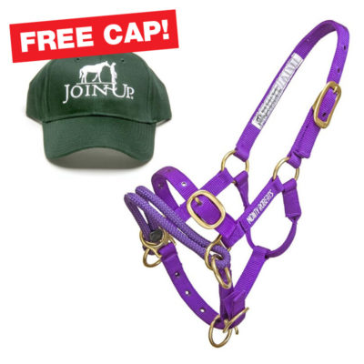 monty-roberts-miniature-horse-halter-purple_fc